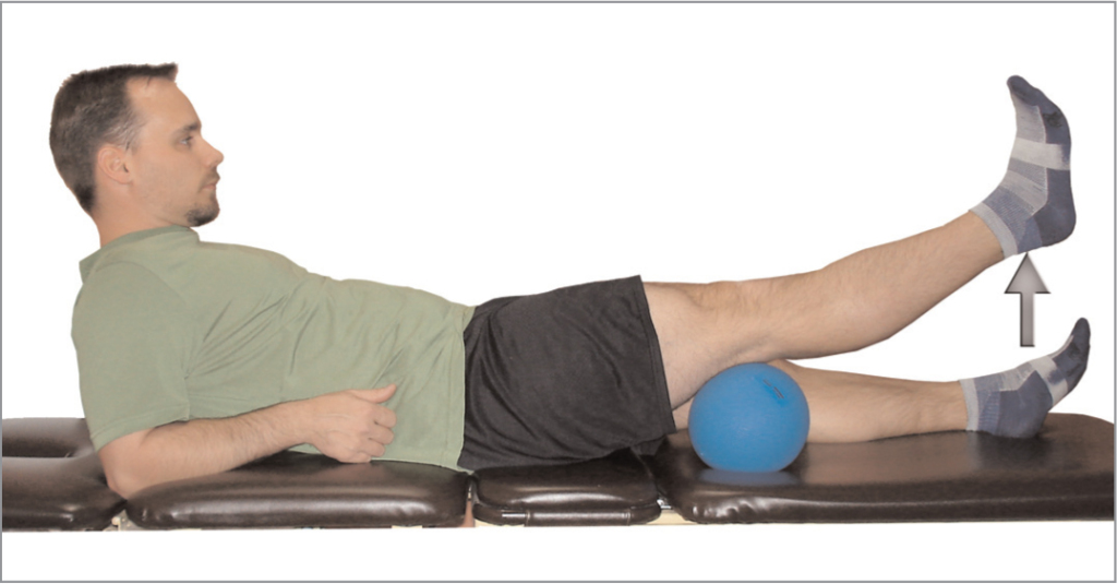 terminal knee extension